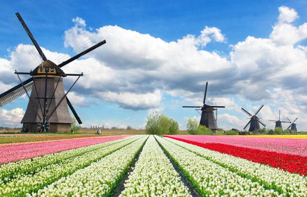 """HOLANDIA  ,, Wiatraki, kwiaty, sery i rowery""""  28.04 – 02.05.2018r"""